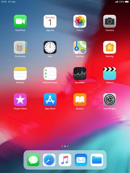 Apple ipad-mini-5-7-9-inch-2019-model-a2124 - Applicaties - Account aanmaken - Stap 2