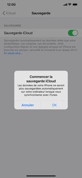 Apple iPhone XS Max - iOS 13 - Données - Créer une sauvegarde avec votre compte - Étape 11