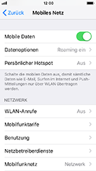 Apple iPhone 5s - iOS 12 - Ausland - Auslandskosten vermeiden - Schritt 6