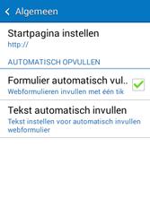 Samsung Galaxy Young2 (SM-G130HN) - Internet - Handmatig instellen - Stap 25