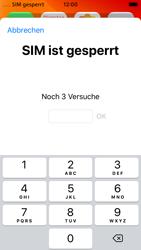 Apple iPhone SE - iOS 13 - Internet und Datenroaming - Manuelle Konfiguration - Schritt 14