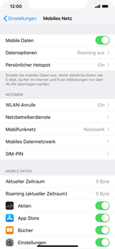 Apple iPhone XR - Ausland - Im Ausland surfen – Datenroaming - 6 / 10