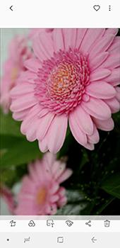 Samsung Galaxy A6 - Photos, vidéos, musique - Prendre une photo - Étape 15
