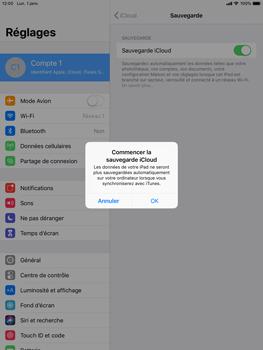 Apple iPad Air 2 - iPadOS 13 - Données - créer une sauvegarde avec votre compte - Étape 12