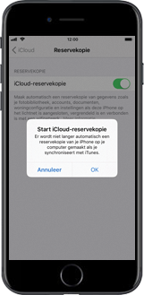 Apple iPhone 8 Plus (Model A1897) - Instellingen aanpassen - Back-up maken in je account - Stap 9
