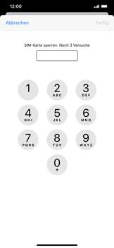 Apple iPhone 11 Pro Max - Startanleitung - So aktivieren Sie eine SIM-PIN - Schritt 6