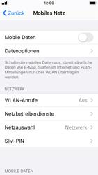 Apple iPhone SE - iOS 13 - Internet und Datenroaming - Prüfen, ob Datenkonnektivität aktiviert ist - Schritt 4