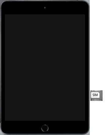 Apple ipad-mini-5-7-9-inch-2019-model-a2124-ipados-13 - Instellingen aanpassen - SIM-Kaart plaatsen - Stap 4