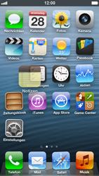 Apple iPhone 5 - Startanleitung - Personalisieren der Startseite - Schritt 4