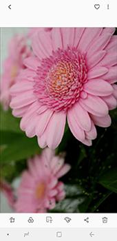 Samsung Galaxy J6 Plus - Photos, vidéos, musique - Prendre une photo - Étape 18