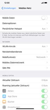 Apple iPhone XR - Internet und Datenroaming - Prüfen, ob Datenkonnektivität aktiviert ist - Schritt 4