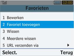 Samsung S3570 Chat 357 - Internet - Internetten - Stap 12