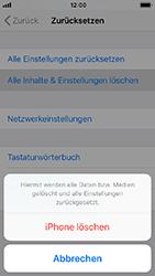 Apple iPhone 5s - Fehlerbehebung - Handy zurücksetzen - 8 / 11