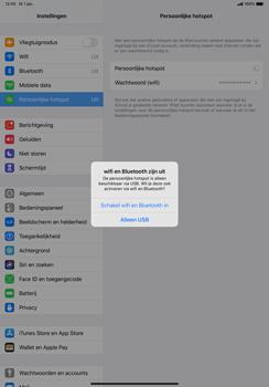 Apple ipad-pro-10-5-inch-met-ipados-13-model-a1709 - WiFi - Mobiele hotspot instellen - Stap 7