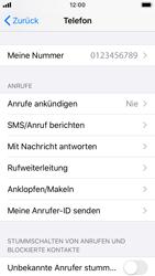 Apple iPhone SE - iOS 13 - Anrufe - Rufumleitungen setzen und löschen - Schritt 4