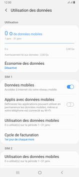 Samsung Galaxy A80 - Internet et roaming de données - Comment vérifier que la connexion des données est activée - Étape 7