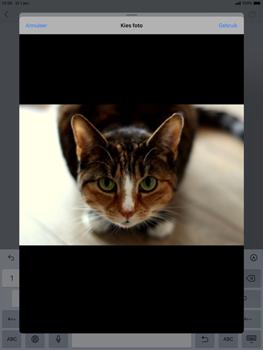 Apple iPad Air (2019) - iPadOS 13 - E-mail - e-mail versturen - Stap 12
