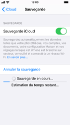 Apple iPhone SE - iOS 13 - Données - créer une sauvegarde avec votre compte - Étape 14