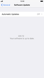 Apple iPhone 8 - iOS 12 - Software - Installing software updates - Step 8