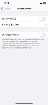 Apple iPhone X - iOS 14 - Internet und Datenroaming - Deaktivieren von Datenroaming - Schritt 6