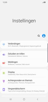 Samsung galaxy-note-10-plus-single-sim-sm-n975f - WiFi - Mobiele hotspot instellen - Stap 4