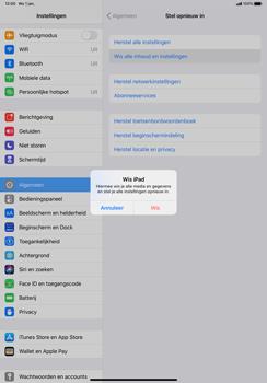 Apple iPad Pro 11 inch 2nd generation (2020) (Model A2230) - Instellingen aanpassen - Fabrieksinstellingen terugzetten - Stap 6