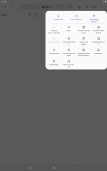 Samsung galaxy-tab-a-10-1-lte-2019-sm-t515 - Internet - Handmatig instellen - Stap 25