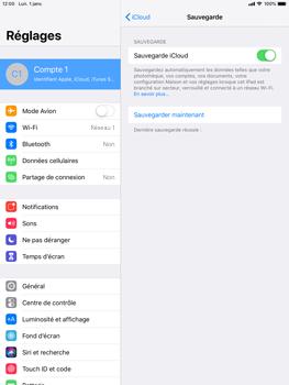 Apple iPad Air 2 - iPadOS 13 - Données - créer une sauvegarde avec votre compte - Étape 13