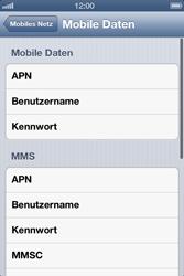 Apple iPhone 3GS - Internet und Datenroaming - Manuelle Konfiguration - Schritt 7