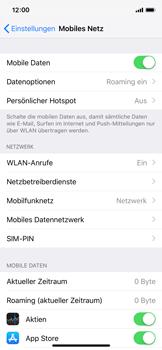 Apple iPhone X - iOS 12 - Ausland - Auslandskosten vermeiden - Schritt 6