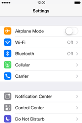 Apple iPhone 4 S - iOS 7 - Network - Usage across the border - Step 3