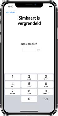 Apple iphone-xs-max-met-ios-13-model-a1921 - Instellingen aanpassen - Activeer het toestel en herstel jouw iCloud-data - Stap 30