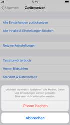 Apple iPhone SE (2020) - iOS 14 - Gerät - Zurücksetzen auf die Werkseinstellungen - Schritt 7