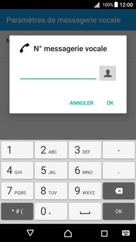 Sony Xperia Z5 Premium (E6853) - Android Nougat - Messagerie vocale - Configuration manuelle - Étape 8