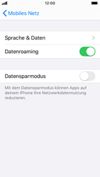 Apple iPhone SE - iOS 13 - Ausland - Auslandskosten vermeiden - Schritt 7