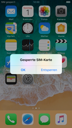 Apple iPhone 6 - iOS 11 - Internet und Datenroaming - Manuelle Konfiguration - Schritt 15