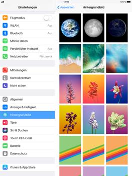 Apple iPad Mini 4 - iOS 11 - Hintergrund - 2 / 2