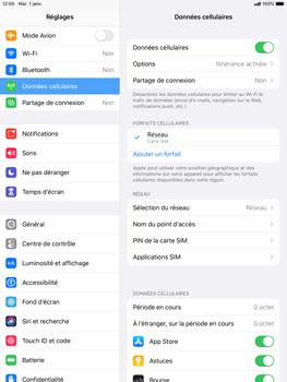 Apple iPad mini (2019) - iPadOS 13 - Internet - Configuration manuelle - Étape 8