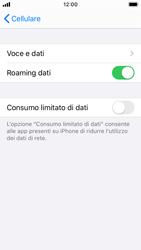 Apple iPhone SE - iOS 13 - Internet e roaming dati - Disattivazione del roaming dati - Fase 5