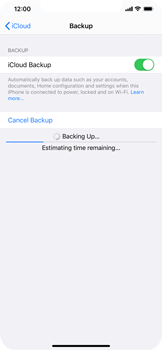 Apple iPhone 11 - Data - Create a backup with your account - Step 13