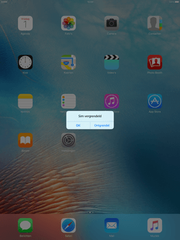 Apple iPad Pro - Internet - Handmatig instellen - Stap 13