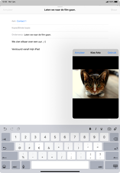 Apple ipad-pro-11-inch-2018-model-a1934 - E-mail - Hoe te versturen - Stap 11