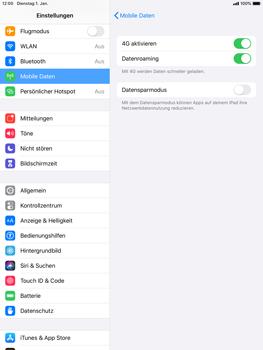 Apple iPad Mini 4 - ipados 13 - Internet und Datenroaming - Deaktivieren von Datenroaming - Schritt 5