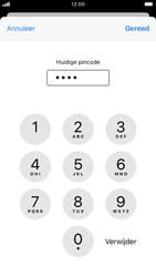 Apple iPhone 6s - iOS 13 - Beveiliging - pas de pincode voor je simkaart aan - Stap 7