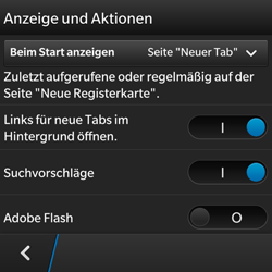 BlackBerry Q5 - Internet - Apn-Einstellungen - 17 / 22