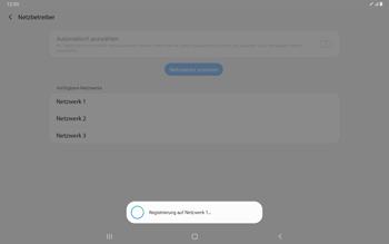 Samsung Galaxy Tab S7 - Netzwerk - Manuelle Netzwerkwahl - Schritt 11