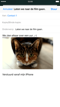 Apple iPhone 6 Plus iOS 10 - E-mail - E-mail versturen - Stap 14