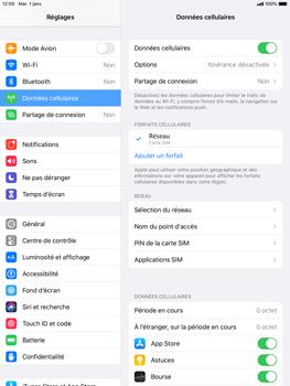 Apple iPad 9.7 (2018) - iPadOS 13 - Internet et roaming de données - Comment vérifier que la connexion des données est activée - Étape 5