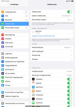 Apple ipad-pro-11-inch-2018-model-a1934- ipados-13 - Internet - Handmatig instellen - Stap 8