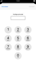 Apple iPhone 7 - iOS 13 - Beveiliging - pas de pincode voor je simkaart aan - Stap 6